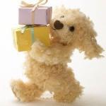クリスマス低予算プレゼント1000円でおしゃれ!500円以下は?