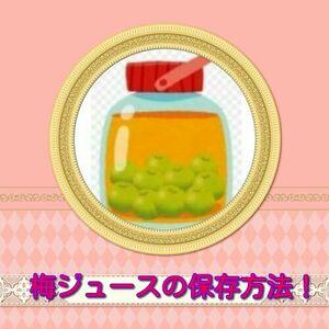 シロップ 保存 容器 梅